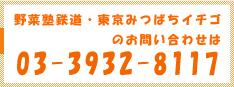 野菜塾鉄道・東京ミツバチイチゴのお問い合わせ